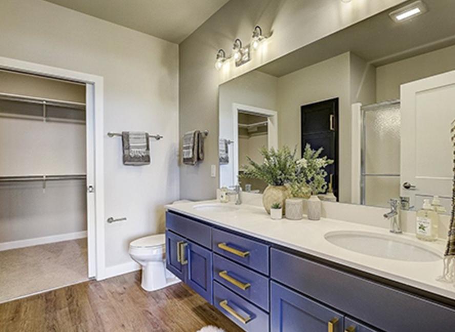 02-cabinet-bath-shaker-standard@2x